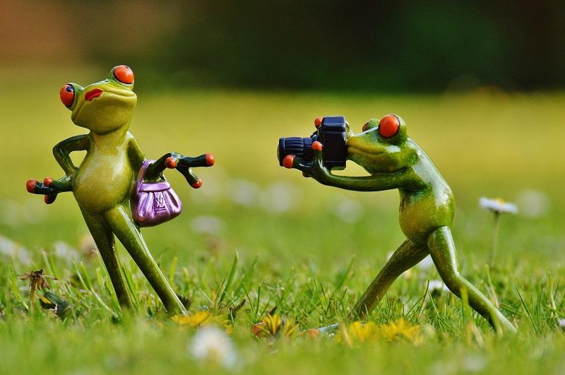 trucos sencillos para salir perfectos en las fotos